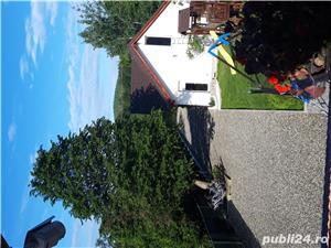 Închiriez cabana pe Valea Avrigului - imagine 15