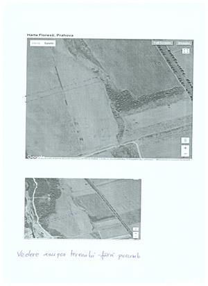 ocazie,teren extravilan banesti - imagine 1