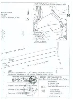 ocazie,teren extravilan banesti - imagine 4