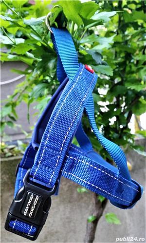 NOU HAM EzyDog QUICK FIT M caine talie medie 10-15kg bleu doar probat cu un mic defect de fabricatie - imagine 4