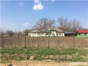 Casa cu livada de pomi fructiferi, in suprafata de 3500 mp, Calinesti, TR - imagine 3