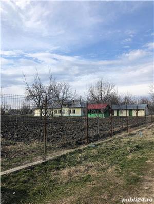 Casa cu livada de pomi fructiferi, in suprafata de 3500 mp, Calinesti, TR - imagine 9