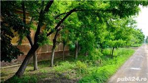 Vand casa Cebza, un colt de liniste si pace langa Timisoara (35 km) - imagine 1