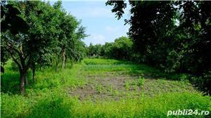 Vand casa Cebza, un colt de liniste si pace langa Timisoara (35 km) - imagine 8