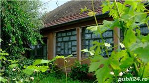 Vand casa Cebza, un colt de liniste si pace langa Timisoara (35 km) - imagine 5