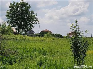 Proprietar, vand casa batraneasca si teren in Moara Vlasiei, 2.426 mp, deschidere dubla, 62.000 EUR  - imagine 8
