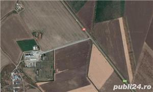 teren intravilan cu casa in comuna Mihail Kogalniceanu , C-ta - imagine 2