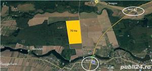 Teren Snagov latura padure 9,5 HA  -Autostrada A3  - imagine 1
