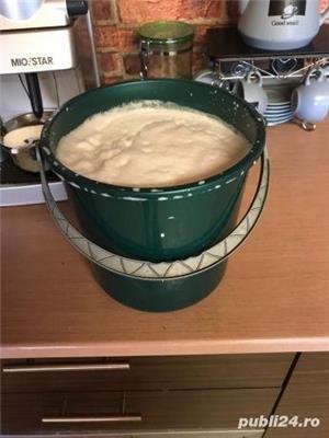 Lapte de capra - imagine 1
