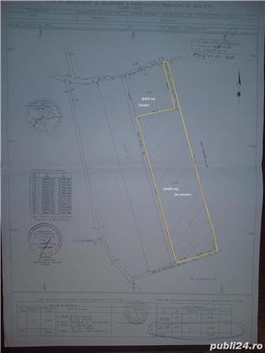 Teren  Butimanu  Dambovita 34 400 mp  - imagine 5