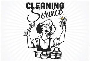 Cuplu pentru domestic cleaning in UK - imagine 1
