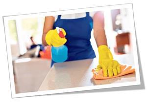 Cuplu pentru domestic cleaning in UK - imagine 4