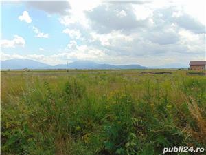 De vanzare teren Harman zona de case 35euro/mp - imagine 3