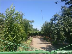 Casa + teren de vanzare, comuna Ciochina, judetul Ialomita - imagine 2