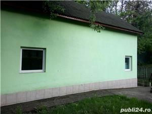 Casa de inchiriat Insula Mures Arad - imagine 6