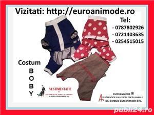 Vestimentatie si accesorii animale - imagine 4