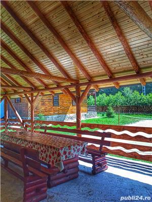 Cabana Lăcrămioara, sat vacanta Dejani, 20 km de Fagaras, jud. Brasov - imagine 6