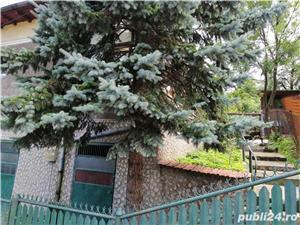 Telega,la 4 km de Campina, casa renovata,zona de deal - imagine 3