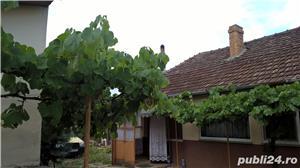 Vând casă din  în Pecica Str. 223 Nr 10 - imagine 2