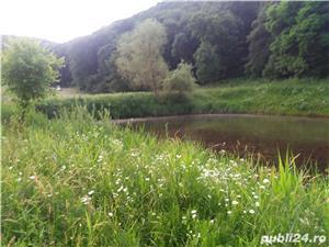 vand teren cabana langa lac sarat - imagine 5
