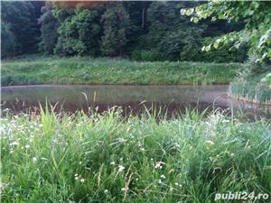 vand teren cabana langa lac sarat - imagine 4