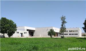 Hale de inchiriat - Arad-aproape de autostrada - imagine 10