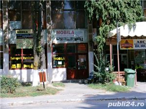 De vanzare spatiu comercial in Stei Bihor - imagine 13