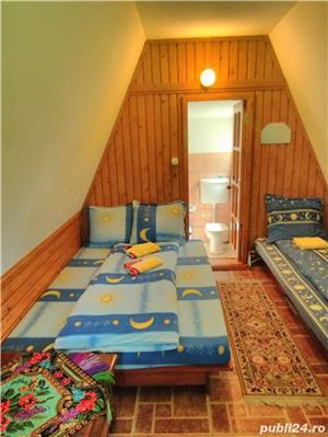 inchiriez  vila ,7camere, pentru relaxare  in natura la munte IN BUCOVINA - imagine 12