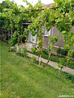 Casa taraneasca - 3 camere + bucatarie + anexe - imagine 7