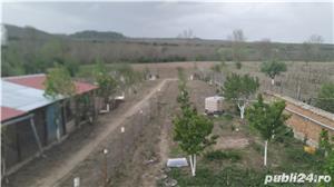 Casa saseasca renovata, cu 2 apartamente si teren 6380 mp , Seica Mare, Sibiu - imagine 7