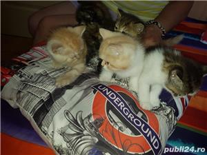 Hello kitty - imagine 12