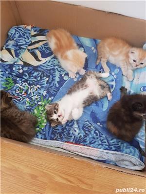 Hello kitty - imagine 13