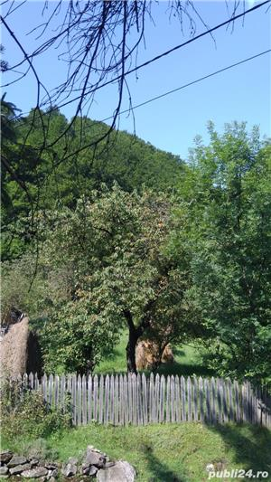 Vanzare teren intravilan pe Valea Doftanei - imagine 9