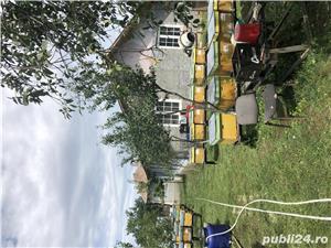 Vând casa cu hala și teren in com Salciile - imagine 6