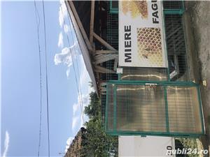 Vând casa cu hala și teren in com Salciile - imagine 9
