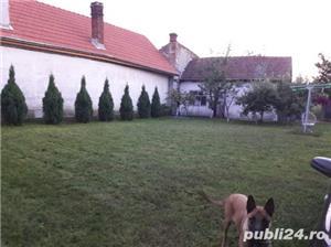 Vanzare /Schimb cu apartament+diferenta Casa P+M. - imagine 9