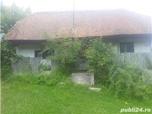Casa in Minisel (Arad) - imagine 3