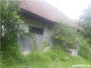 Casa in Minisel (Arad) - imagine 5