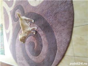 Cățelușa  - imagine 2