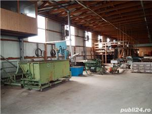 Imobiliare Maxim - fabrica de prelucrarea lemnului / hale - imagine 2
