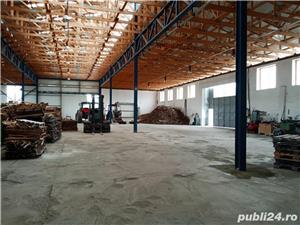 Imobiliare Maxim - fabrica de prelucrarea lemnului / hale - imagine 1