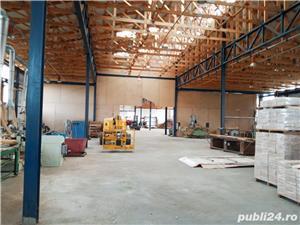Imobiliare Maxim - fabrica de prelucrarea lemnului / hale - imagine 3