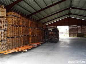 Imobiliare Maxim - fabrica de prelucrarea lemnului / hale - imagine 4