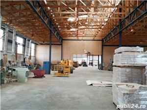 Imobiliare Maxim - fabrica de prelucrarea lemnului / hale - imagine 10