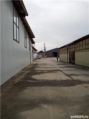 Imobiliare Maxim - fabrica de prelucrarea lemnului / hale - imagine 7
