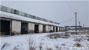 Depozit in zona industriala Ortisoara - imagine 5