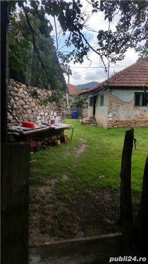 Casă și grădină la poalele retezatului zona turistică Țara Hațegului - imagine 3