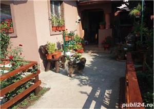 Casa parter, 2 camere, renovata, Bucurestii Noi, Metrou Straulesti, sector 1 - imagine 5