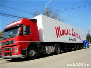 Angajare  Moara Carani - imagine 2