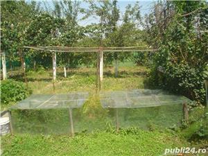Vand Casa Cu Teren, Curte Si Anexe,Zona Carbonifera In Caransebes,jud Caras-Severin - imagine 5